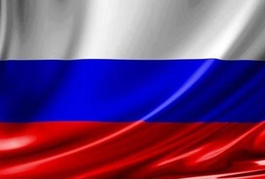 """Крыша для ДИП Российский флаг"""""""""""